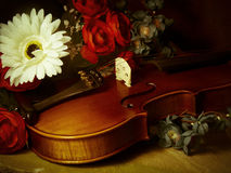 Violin and bow with flowers Stock Photography