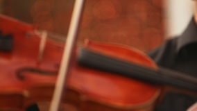 Violin and bow. Game bow the violin. Violin, strings and bow stock footage