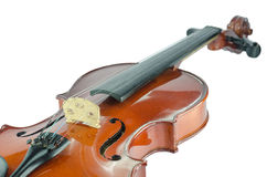 The violin bridge closeup. Isolated on white Stock Image