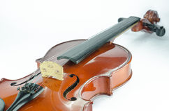 The violin bridge closeup. On white background Royalty Free Stock Image