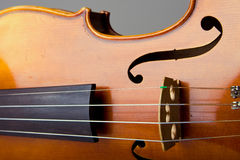 Violin Bridge and Strings Royalty Free Stock Photo
