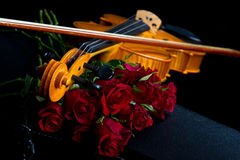Violin on carry case Stock Image