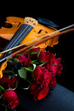 Violin on carry case Royalty Free Stock Images