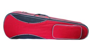 Violin Case Stock Photo