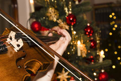 Violin with christmas tree Stock Image