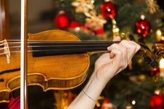 Violin with christmas tree Stock Photos
