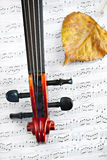 Violin classic string instrument Royalty Free Stock Images