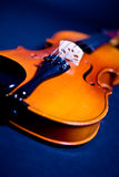 Violin close-up Stock Images