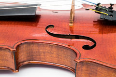 Violin Close Up View on White Background Royalty Free Stock Photo