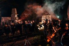 Violin in concert Royalty Free Stock Photos