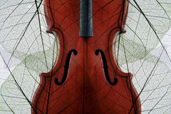Violin covered with autumn leaves Royalty Free Stock Photos