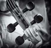 Violin details. Black and white image with old violin details Royalty Free Stock Photos