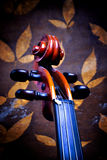 Violin details. Neck violin with leafs background Stock Photo