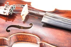 Violin or fiddle from the front side. Violin or fiddle from the front on a white background Royalty Free Stock Photo