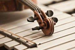 Violin fingerboard Royalty Free Stock Image