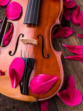 Violin and flower petals Royalty Free Stock Photos