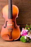 Violin and flower Royalty Free Stock Photography