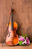 Violin and flower Stock Image