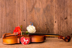 Violin and flower Royalty Free Stock Photos