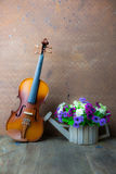 Violin and flower Royalty Free Stock Images