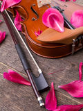 Violin and flowers Royalty Free Stock Image