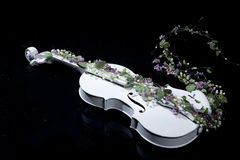 Violin And Flowers Stock Images