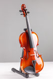 Violin front view isolated on gray Royalty Free Stock Images