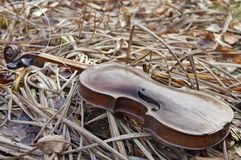Violin on the Grass Royalty Free Stock Photos
