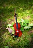 Violin on a grass and green leaves around.  Royalty Free Stock Photography