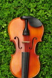 Violin in grass. A violin on top of grass Royalty Free Stock Photos