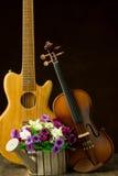 Violin, guitar on still-life Stock Photography