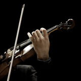 The violin in the hands of a musician Stock Photo
