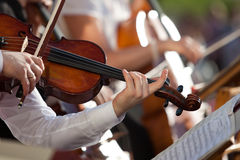 Violin in the hands of a musician Royalty Free Stock Photos