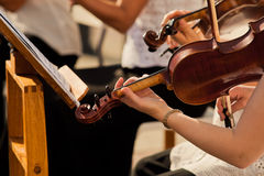 Violin in the hands of musicians Royalty Free Stock Images