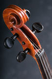 Violin head on gray background Royalty Free Stock Image