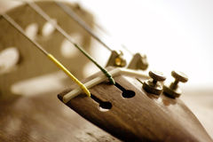 Violin instrument. In sepia tone Stock Image