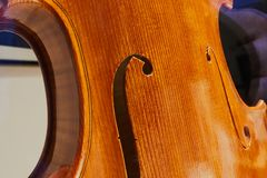 Violin without strings. Violin instrument body part without strings stock photos