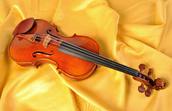 Violin isolate Stock Image
