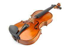 Violin isolate Royalty Free Stock Image