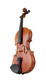 Violin isolated Royalty Free Stock Image