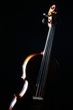 Violin isolated on black Stock Photo