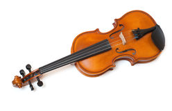 Violin isolated on white. Violin isolated over white background Stock Images