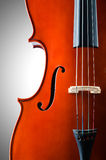 Violin isolated Stock Image