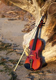 Violin Leaning on a Old Stump. That is laying on the beach. Taken at Indian Island County Park, Long Island, New York Stock Photo