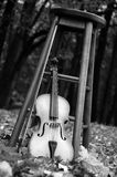 Violin with leaves in background. Violin resting near chair  in fall season Stock Photos