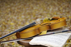 Violin with leaves and musical sheet Stock Photo