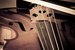 Violin with little dust Stock Image