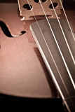 Violin with little dust Stock Photo