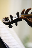 Violin and music. A woman's hand holding a violin Royalty Free Stock Image