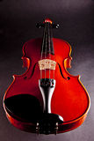 Violin Music. Classical Violin Music on black Royalty Free Stock Photography